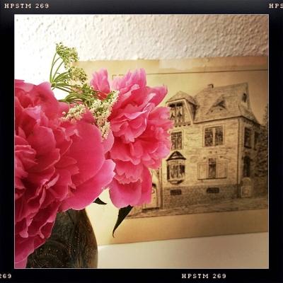 Rosen und das alte Haus