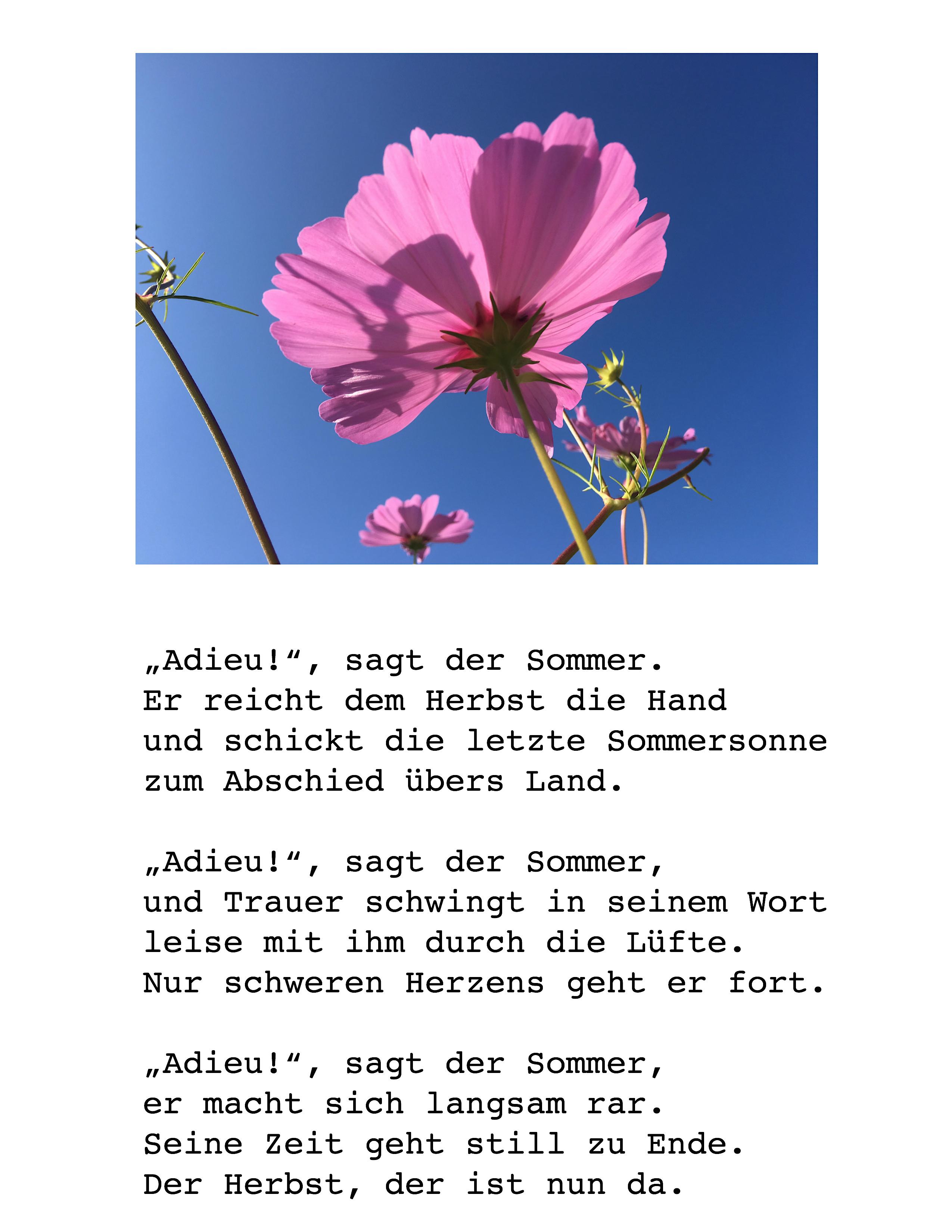 Gedicht Für Senioren Zum Abschied Des Sommers Sommerzeit